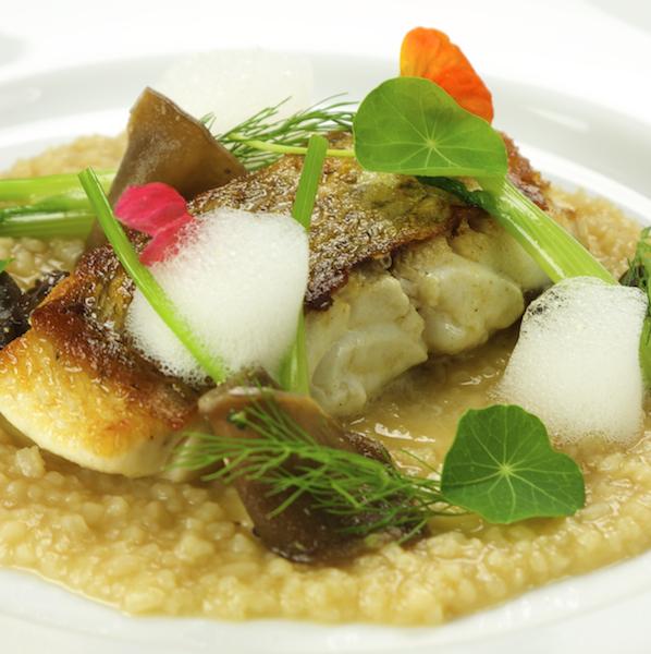 Sydenham Restaurant Guide - Eatout.nz